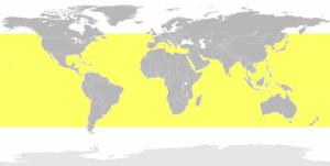 Great White Shark Territory